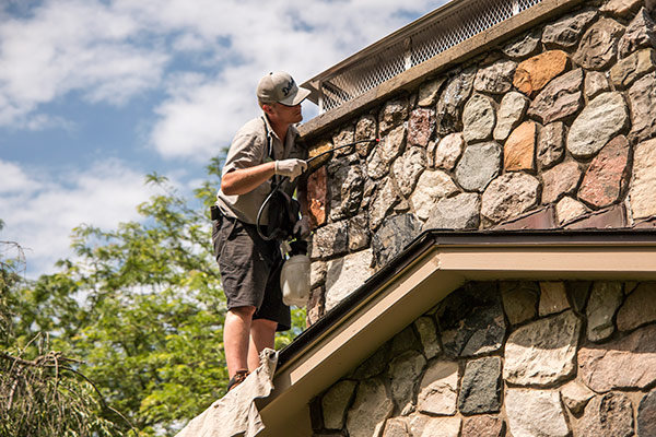 Tips To Find A Chimney Sweep Doctor Flue Michigan Amp Ohio