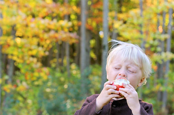Young boy eats an apple in front of colorful fall trees.