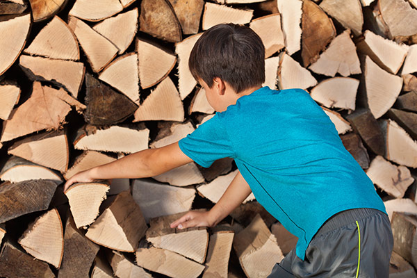 Young boy stacking chopped firewood in a pile for storage.